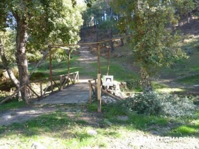 El Castañar de El Tiemblo , Un bosque mágico;vacaciones singles madrid;rutas senderismo madrid fac